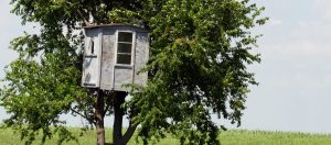 Treehouse-The Kids Can Use it Too