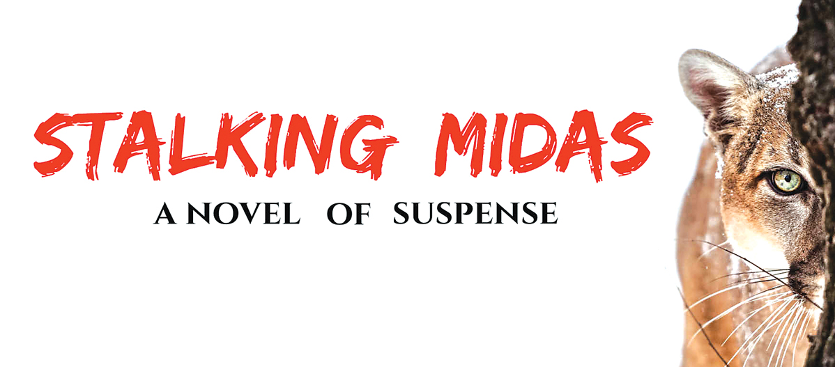 Book Review: Stalking Midas, by Debbie Burke