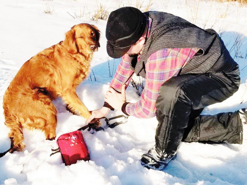 Winter photo of a man removing a golden retriever's paw from a trap.